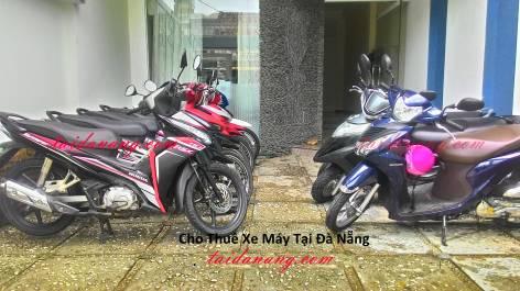 cho-thue-xe-may-tai-da-nang