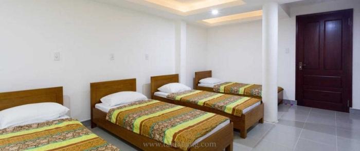 Tong hop hostel Da Nang